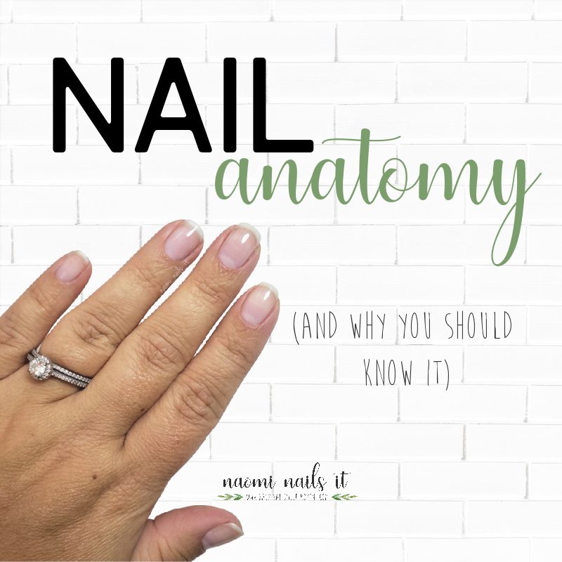 nail anatomy, nail health, gelmoment, gel polish, gel damage, healthy nails, nail oil